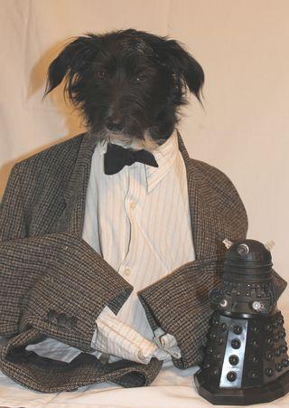 DoggyWho7